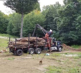 Another log load to cut up for winter